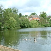 The Mere. Diss