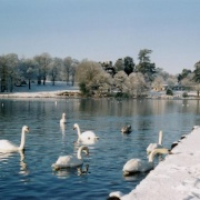 Trentham gardens, Staffordshire in the snow, Boxing Day 2004