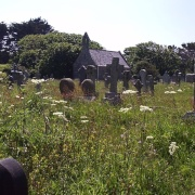 This is the living graveyard of St Uny's church, Lelant Cornwall.