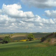 Lincolnshire Wolds, Nr Fulletby.