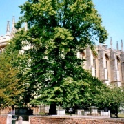 Eton College in Eton, Berkshire
