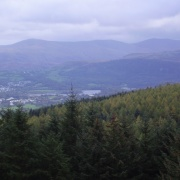 A picture of Whinlatter Forest Park