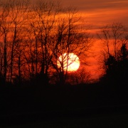 Sunset in April at Rowney Warren, Nr Chicksands, Shefford, Beds