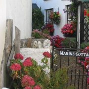 In the village, Combe Martin, Devon