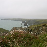 A picturesque view of Bedruthan Steps, St Eval, Cornwall