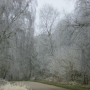 Winterland, Worksop, Nottinghamshire