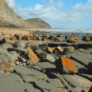 Charmouth at Low Tide