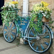 A colourful Cotswold Carriage.