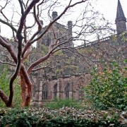 Chester Cathedral in Winter