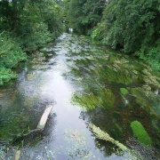 Chilham walk crossing the River Stour (1)