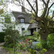 A pretty thatched house in Belton