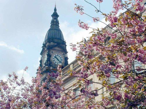 Bolton Town Hall seen through cherry blossom, Spring 2003.
