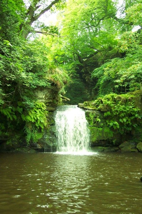 Thomason Foss Waterfall, Beck Hole, Goathland, North Yorkshire Moors