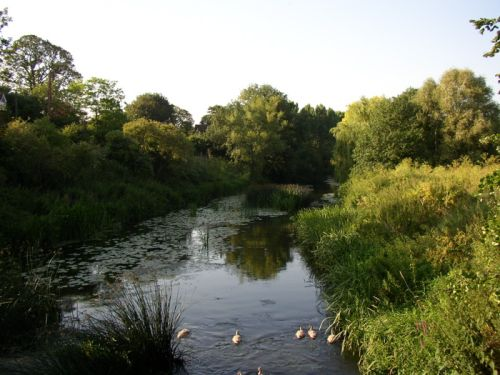 The river Avon at Reybridge, Wiltshire. Taken during the summer of 2004