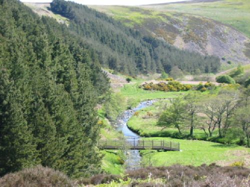 A Walk in the Cheviots, Northumberland