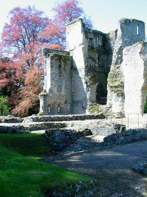 Bishop's Waltham Palace Ruins