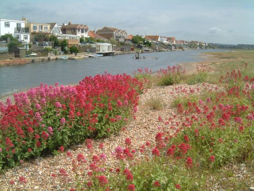 A picture of Shoreham-by-Sea