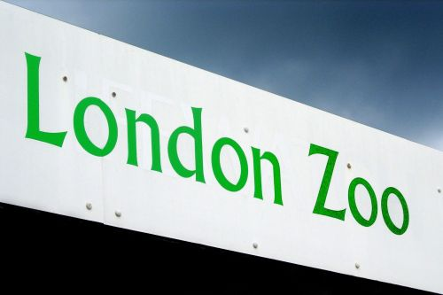 Entrance, London Zoo