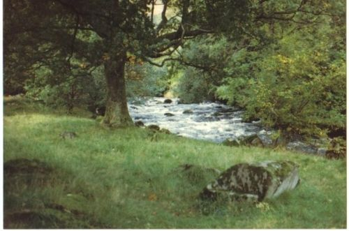Same stream near Rydal, Lake district