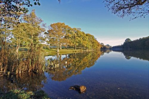 Lake near Combrook in Warwickshire, England