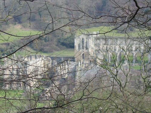 Rievaulx Abbey from Ashberry wood, North York Moors.