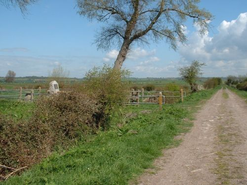 Westonzoyland, Somerset. Site of the battle of Sedgemoor 6th July 1685. View from the track.