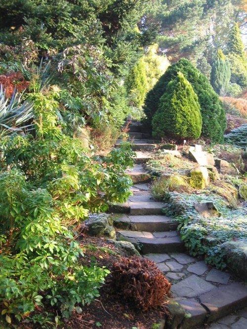 Quot Fletcher Moss Alpine Garden Didsbury Quot By Arash Hesami