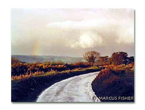 Road in Dartmoor, Hound Tor, Dartmoor, County Devon, England