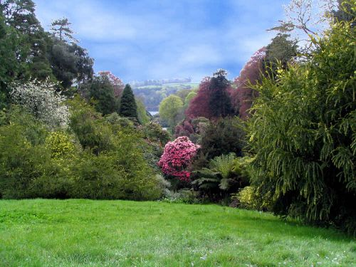 Trebah Garden, Cornwall.  Looking down the valley from below the house.