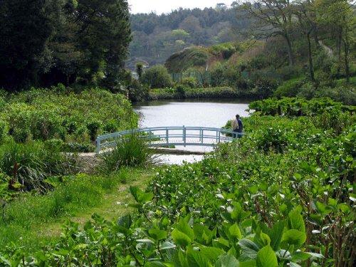 Trebah Garden, Cornwall The lower garden