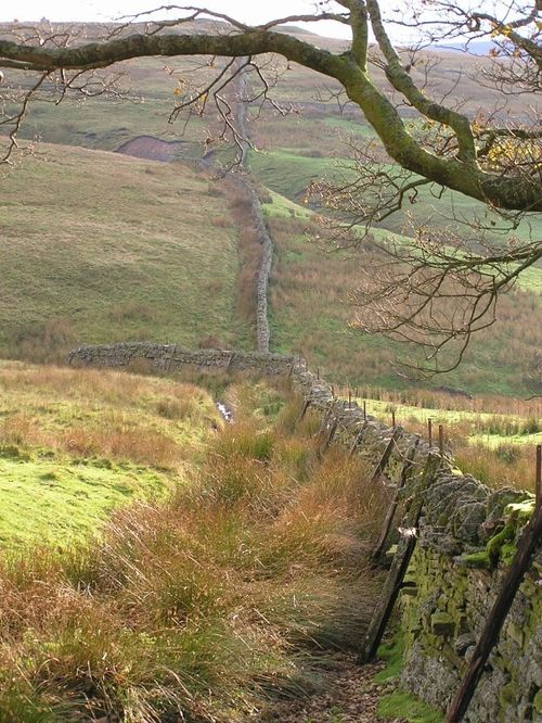 A wall on the walk to the grouse hunting marshes near Allendale, Northumberland
