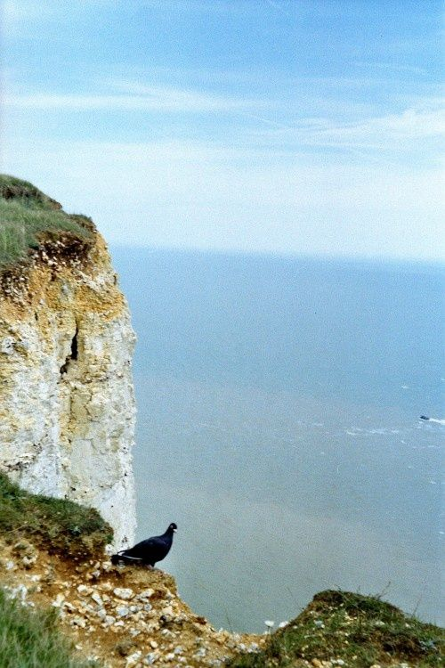 Eastbourne - Beachy Head