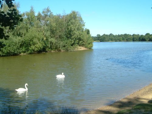 Wellington Country Park, Hampshire
