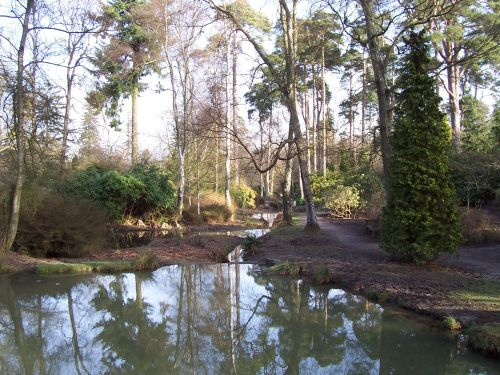 Tilgate Forest, Crawley