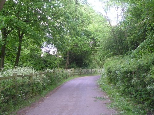 Just around the corner of this lovely country lane lies Babbington Village.