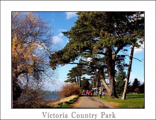 Royal Victoria Country Park. Netley, Southampton, a sunny day January 2007
