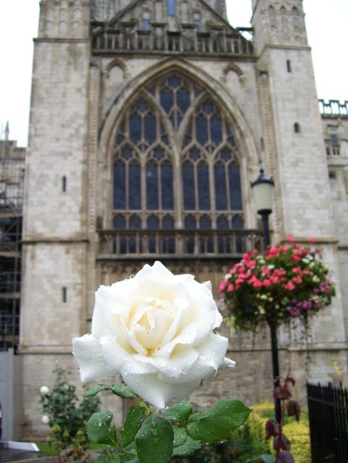 Gloucester Cathedral, Gloucester