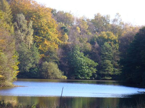 Serpentine Pool, Greenway Bank Country Park, Biddulph