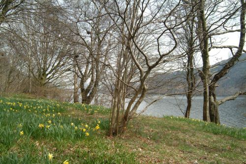 Wordsworth Point, Ullswater, Cumbria, Spring 2005.