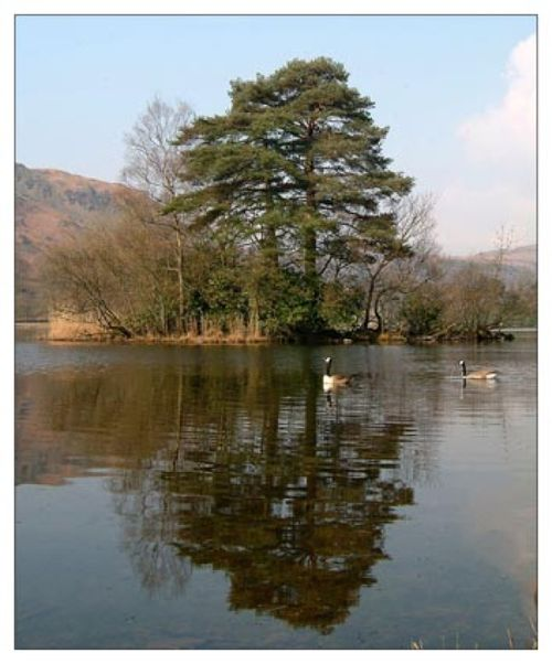 Rydal Water Grasmere, Cumbria.