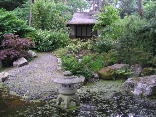 Japanese Garden at Pine Lodge Gardens, St Austell, Cornwall