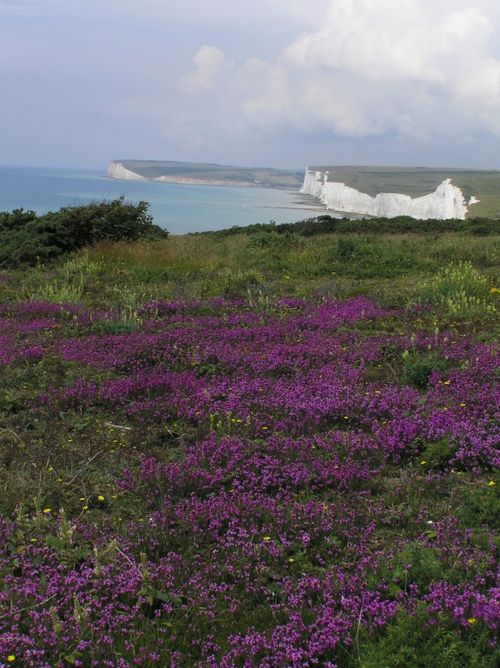 From Beachy Head towards Birling Gap, East Sussex