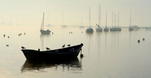 Misty morning, Keyhaven, Hampshire