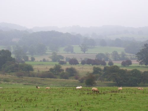 Quot View From Chester S Roman Fort Chollerford
