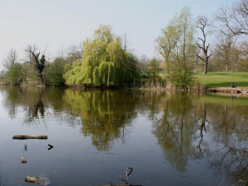 A view accross the lake in Mote Park, Maidstone, Kent