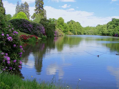 Looking over the lakes at Sheffield Park, East Sussex