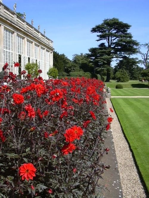 Orangery border at Belton House, Belton, Lincolnshire