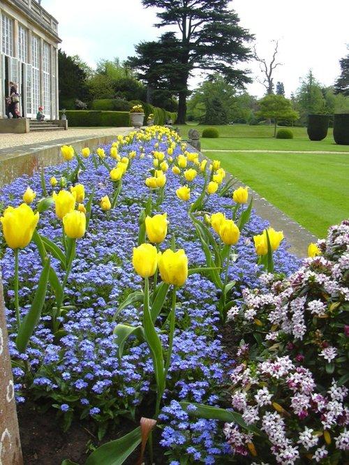 Orangery border at Belton House in Belton, Lincolnshire