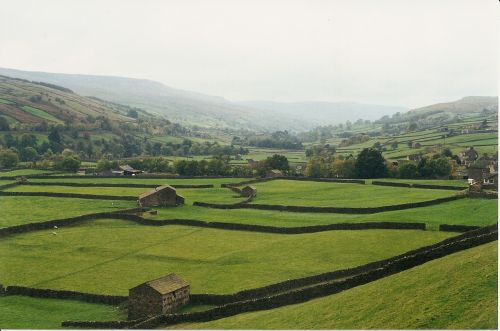 Swaledale, near Gunnerside in North Yorkshire
