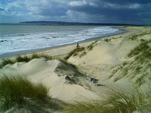 Quot Camber Sands East Sussex Quot By Mark Brown At
